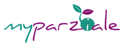 my parziale graphic design web design services